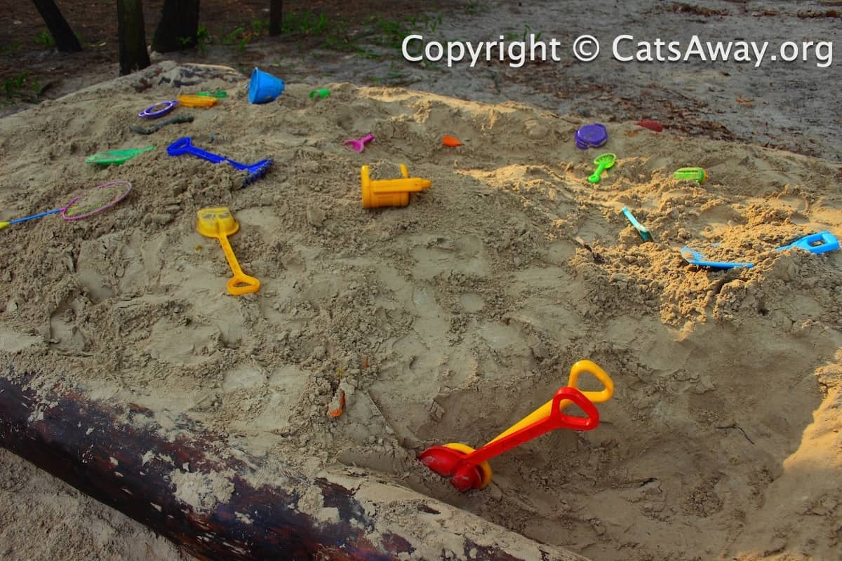 how to keep cats out of a sandbox